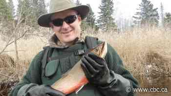 Plan to kill smallmouth bass will require restocking of Miramichi Lake, says biologist - CBC.ca