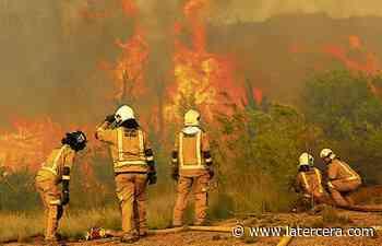 La Araucanía: Intendencia amplía alerta roja a las comunas de Pitrufquén y Gorbea por incendio forestal cercano a viviendas - LaTercera