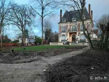 Seine-et-Marne. Des arbres d'un square de Vaires-sur-Marne abattus : l'incompréhension - actu.fr