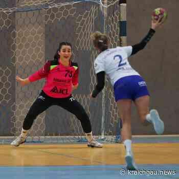 Eine schwere Aufgabe wartet auf das Handball BWOL Team aus Birkenau in Leinfelden-Echterdingen: Eine Spitzenmannschaft wartet auf das Damen 1 Team aus Birkenau - kraichgau.news