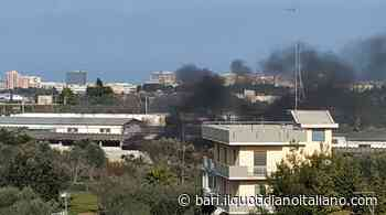 Bari, fumo nero e aria irrespirabile: fiamme dietro al cimitero di Carbonara. Brucia amianto - Il Quotidiano Italiano - Bari