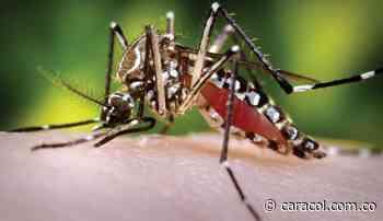 Mujer con dengue hemorrágico completa 12 horas sin recibir atención médica - Caracol Radio