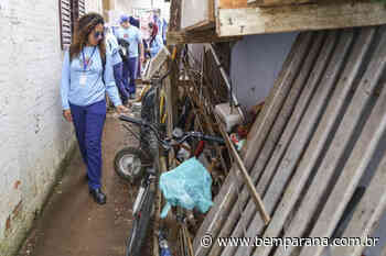 Cajuru recebe mutirão de combate ao Aedes aegypti - Jornal do Estado