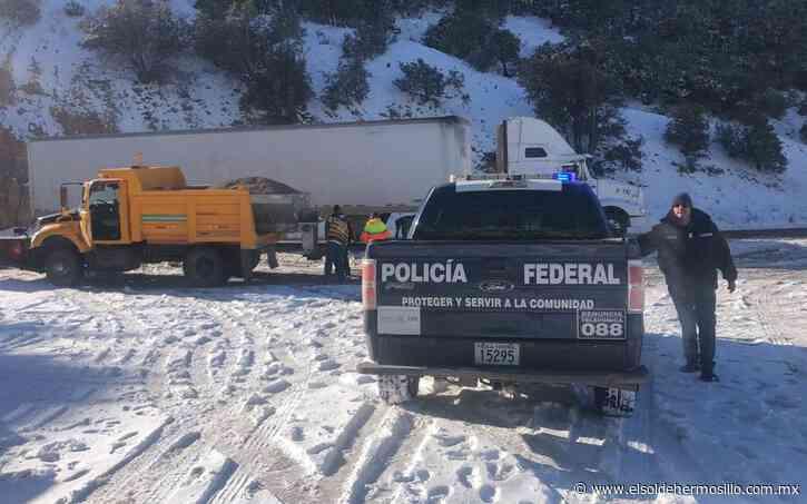 Quedan varados 12 camiones en carretera Janos-Agua Prieta - El Sol de Hermosillo
