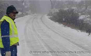 Nieva en tres municipios y cierran tramos carretero Janos-Agua Prieta - El Heraldo de Chihuahua