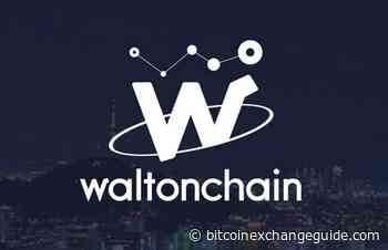 WaltonChain (WTC): The Big Cryptocurrency Coin Winner of the Day Goes For More - Bitcoin Exchange Guide