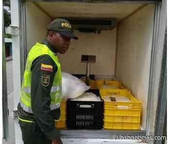 250 kilos de queso, avaluados en $ 1.500.000, fueron incautados en Condoto, Chocó | HSB Noticias - HSB Noticias