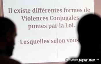 Mitry-Mory : un couple condamné pour des violences conjugales... réciproques - Le Parisien