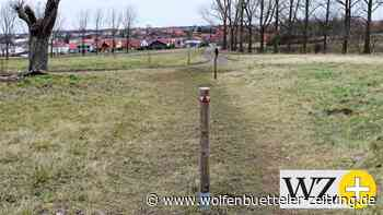 Die Herzogsberge bei Cremlingen sollen Bänke erhalten - Wolfenbütteler Zeitung