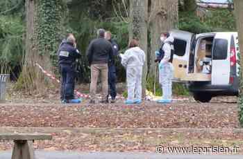 Roissy-en-Brie : le nouveau suspect de l'agression sauvage d'une femme écroué - Le Parisien