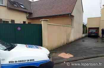 Roissy-en-Brie : le conducteur qui a écrasé l'enfant a été remis en liberté - Le Parisien