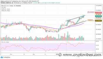 Monero Price Analysis: XMR/USD Price Shoots Up; Seeks Stability above $75 - CryptoVibes