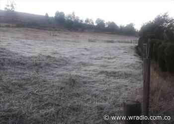 Motavita, Boyacá amaneció afectado por heladas y alerta de enfermedades respiratorias - W Radio