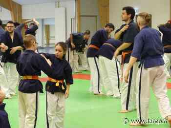 Cet art martial peut être pratiqué par tous - La République du Centre