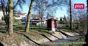 Die Walluf im Martinsthaler Wiesental wird bald renaturiert - Wiesbadener Kurier
