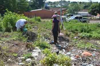 Si aumentan casos de dengue, se declarará emergencia epidemiológica en San Estanislao - Nacionales - ABC Color