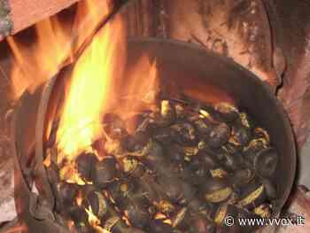 Sagra delle castagne a San Giovanni Ilarione | Vvox - Vvox