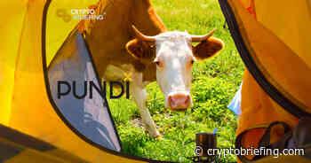 Pundi X Price Analysis NPXS / USD: Bulls On Holiday | Cryptocurrency News - Crypto Briefing