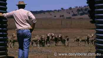 Dubbo MP Dugald Saunders calls for more drought assistance - Daily Liberal