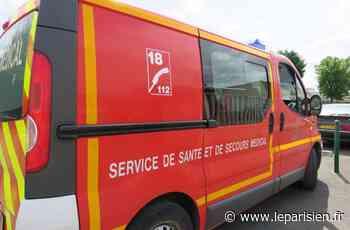 Champagne-sur-Seine : alcoolisé, il s'en prend aux pompiers venus l'aider - Le Parisien