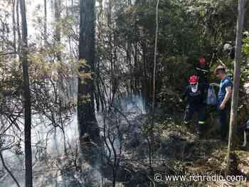 Incendio forestal en Tabio ha sido controlado en un 70 % - RCN Radio