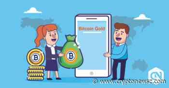 Bitcoin Gold Price Analysis - BTG Predictions, News and Chart - May 30 - CryptoNewsZ