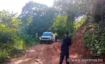 Encuentran muerta a una mujer en la comunidad Corozal de La Ceiba - La Prensa de Honduras