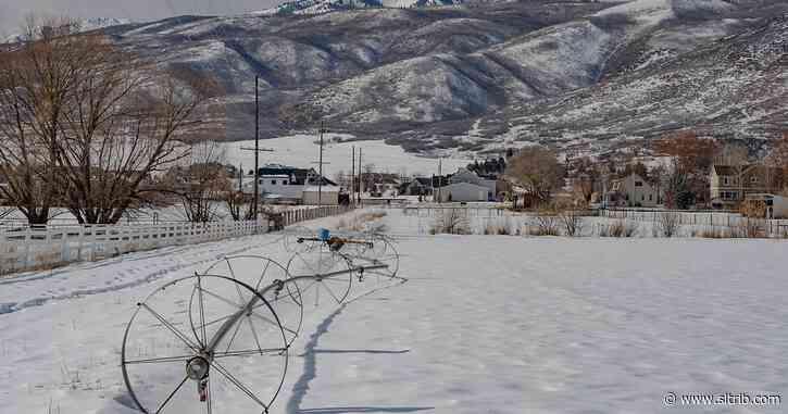Midway residents push back against 'obscene' transmission line