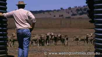 Dubbo MP Dugald Saunders calls for more drought assistance - Wellington Times