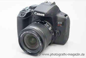 Canon EOS 850D: Bilder und technische Daten geleakt - Photografix Magazin