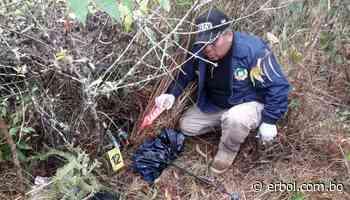 Presunto feminicidio: Encuentran el cadáver de una mujer en Coroico - Red Erbol