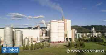 Valdivia: Tribunal reclasifica millonaria multa contra Celulosa Arauco por contaminar río Cruces - BioBioChile