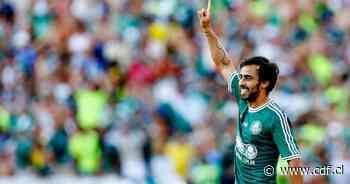 Valdivia, en el once ideal del Palmeiras - CDF