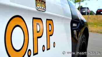 Drunk driver blows double the limit in Chesley - 92.3 The Dock (iHeartRadio)