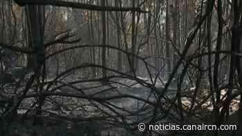 Incendio ha consumido siete hectáreas de bosque en Tabio, Cundinamarca - Noticias RCN