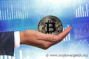 Bitcoin jetzt kaufen? Experte sagt BTC sei bessere Investition als Aktien, Immobilien, Anleihen und Gold - Kryptovergleich.org