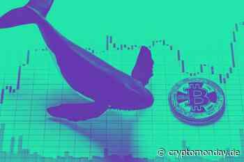 Droht der große Bitcoin Dump? – PlusToken transferiert 12.000 BTC und verbreitet Panik - CryptoMonday