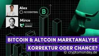 "Bitcoin & Altcoin Report: BTC Dominanz, Altcoin Season, ""The Big Money"" und die HODL Waves - CryptoMonday"
