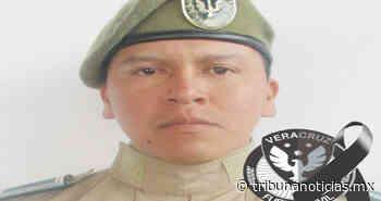 Muere oficial de la Fuerza Civil tras enfrentamiento en Nogales, Veracruz - Tribunanoticias