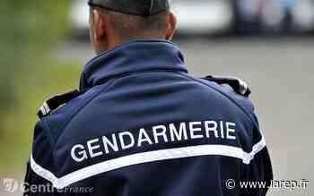 Faits divers - Le sexagénaire disparu dans le secteur de Puiseaux a été retrouvé mort - larep.fr