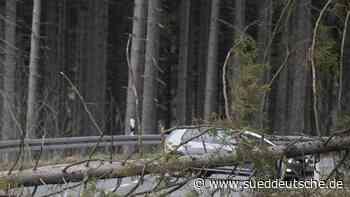 Wetter - Friedrichsdorf - Warnung vor Waldspaziergang: Sorgen für Waldbesitzer - Süddeutsche Zeitung