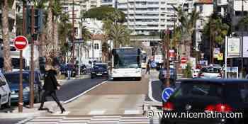 Le bus à haut niveau de service remonte désormais le boulevard Carnot jusqu'au Cannet