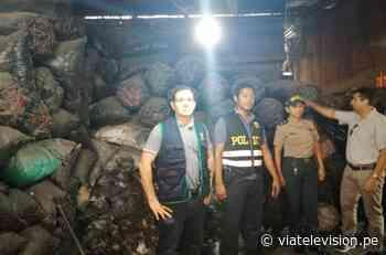 PNP: incautan 10 toneladas de carbón ilegal en Juanjuí - VIA Televisión