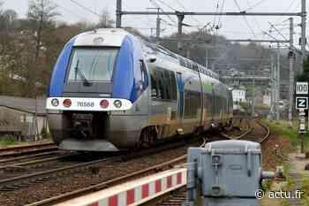 Une personne heurtée par un train entre Lyon et Montluel, des TER supprimés et déroutés - actu.fr