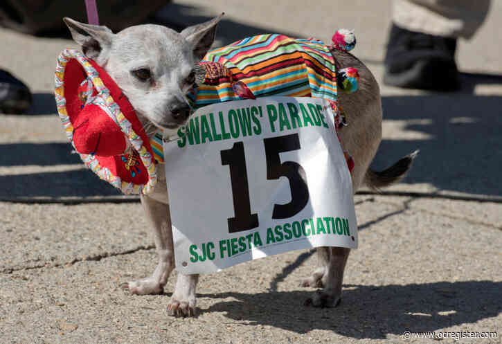 Kids can show off their furry friends Saturday at Los Rios Park