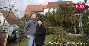 Sturm Sabine: Tanne durchbohrt Hausdach in Monsheim - Wormser Zeitung