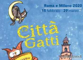 La Città dei Gatti: dal 17 febbraio al 29 marzo a Roma e Milano - Amicidicasa.it