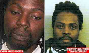Killer and rapist are set to walk free and could be on the streets thanks to appeal courts
