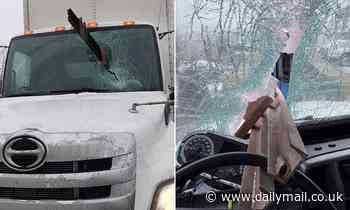 Incredible pictures show steel beam flew off a truck through the windshield of the vehicle behind
