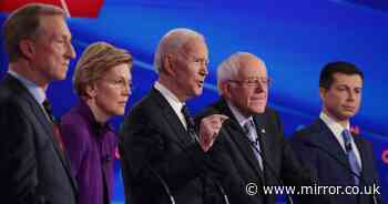 US Presidential elections 2020: Democrat candidates set to face Trump
